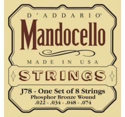 J78 Mandocello
