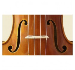 Juego Cello 4/4 Popular C-526