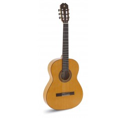 Triana Flamenco Electrificada EQ-6