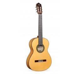 5F Flamenco