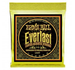 2558 Everlast 80/20 Bronze Coated...