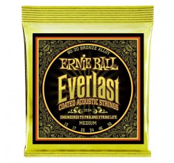 2554 Everlast 80/20 Bronze Coated...
