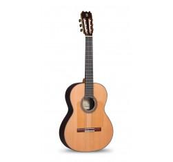 10Fp Flamenco Piñana