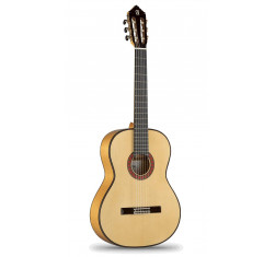 10Fc Flamenco