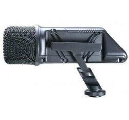 Stereo Videomic