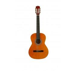 Pack Guitarra 4/4 QGC-15