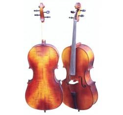 Set Cello Estudio 3/4 HD-C11