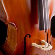 Cellos 7 / 8
