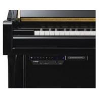 Pianos Acústicos Silent / TransAcoustic